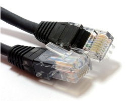 Cable network - RJ45 1m